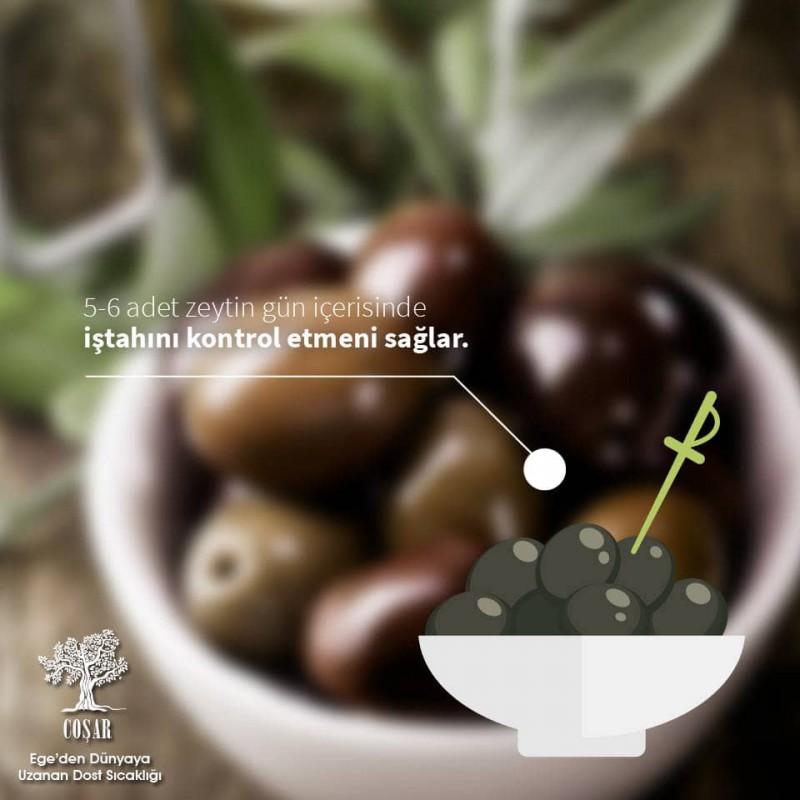 5 Litre Natural Sızma Doğal ZeytinYağı (Erken Hasat)